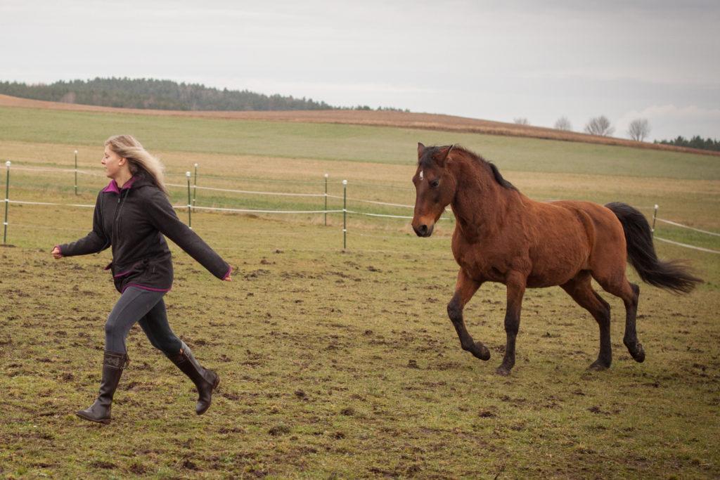 Romina läuft vor Gavilan weg
