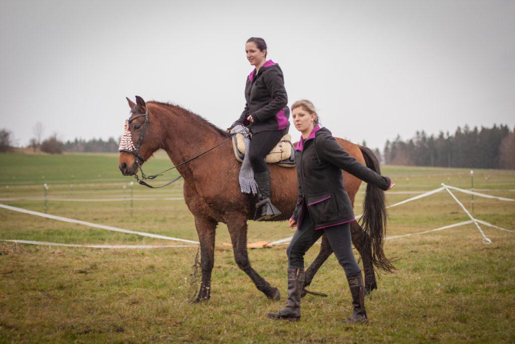Luise reitet auf Gavilan
